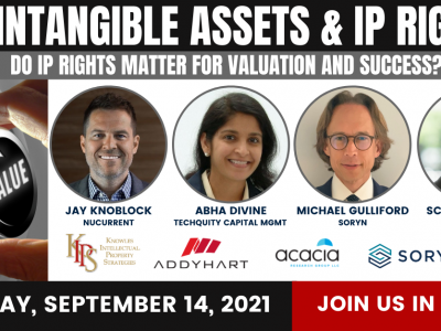 Intangible Assets and IP Rights